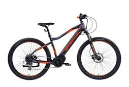 bicykel 29 LECTRON Esconder 19""
